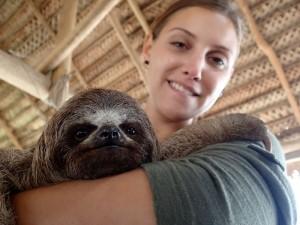 Photo d'un paresseux avec Marlène