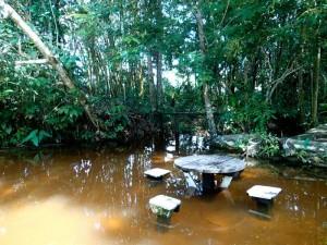 Photo d'un restaurant les pieds dans l'eau en amazoie