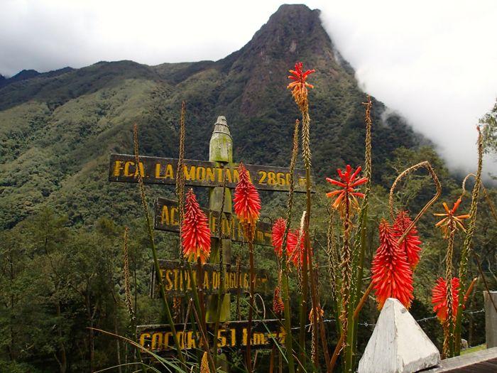 Vue de la vallée depuis la finca montaña