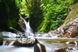 Une des cascades dans la forêt de Mindo