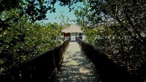 Isla Corazon